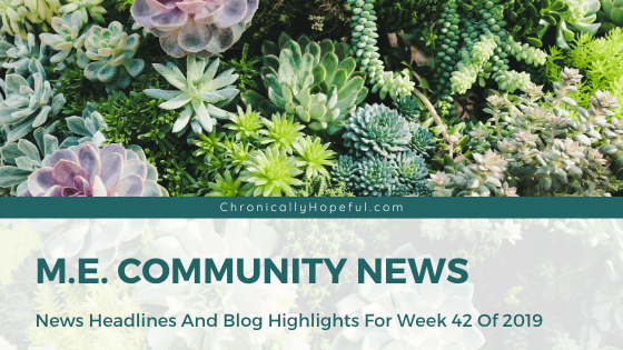 A selection of succulents, Title reads: M.E. Community News, News headlines and blog highlights from week 42 of 2019